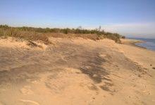 Il Comune di Bernalda nasconde i verbali sulla contaminazione della spiaggia di Metaponto lato Basento