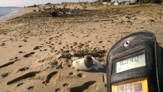Metaponto Lido - ipotetico fondo naturale - zona ricovero barche con campione in vista