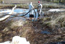 La perdita di petrolio a Bernalda nel 2012: sabotaggio o cattiva manutenzione?